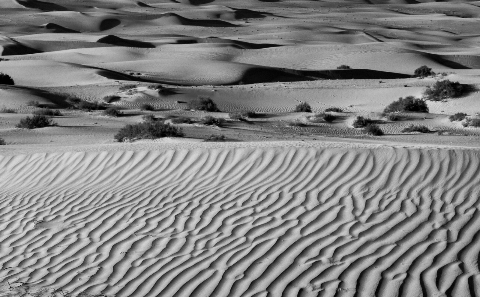 MONO - Lines in the Sand by Ronnie Simpson (7 marks)