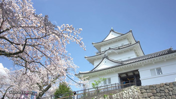 -Spring Edition-Enjoy the Seasons in HAKONE