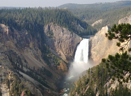 A Yellowstone Stay!