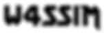 W4SSIM_Logo.png