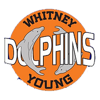 whitney-young-high-school-chicago-il_3a5