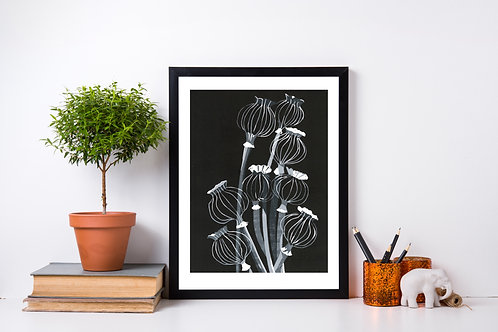 Limited Edition Reduction Lino Print | Poppy Seed Heads