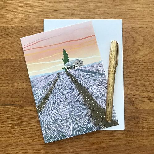 Blank Greetings Card   Lavender Field