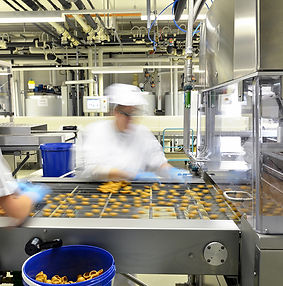 Food Safety Culture food auditing