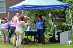 Mohawk Hudson Land Conserv Summer Festival