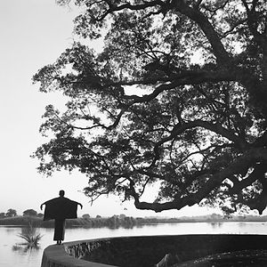 man next to a very large tree in Burma/Myanmar