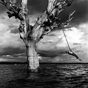 man swinging joyfullyfrom large dead tree in a storm in Burma/Myanmar