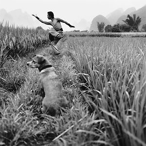 Martial artist and his dog in a field in China.
