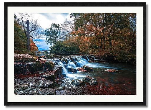 Autumn Flow - (Code 000196)