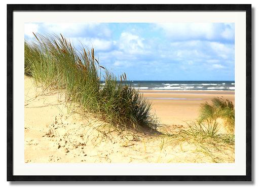 Dune - (Code 00128)