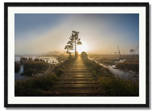 Board Walk Sunrise - (Code 00225)