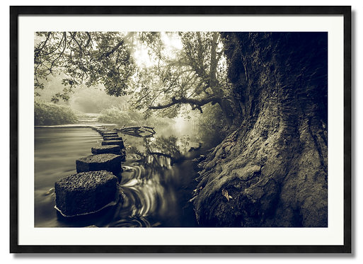 Misty Stepping Stones - (Code 00235)