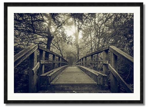 Box Hill Bridge - (Code 00237)