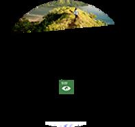 SouthPole-Certificate Kopie.PNG