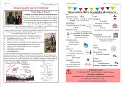 bulletin 72-19