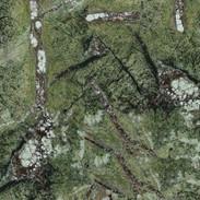 09 MARMOL FOREST GREEN