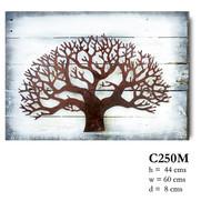 27 C250M