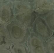 PIIMP031cuarcita-turtle-green