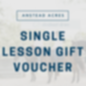 Single Lesson Gift Voucher.png