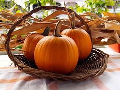 pie-pumpkins-in-basket.jpg