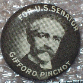 Gifford Pinchot button, 1914