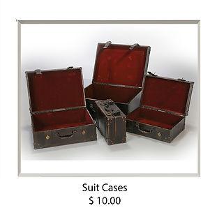 Suit Cases copy.jpg