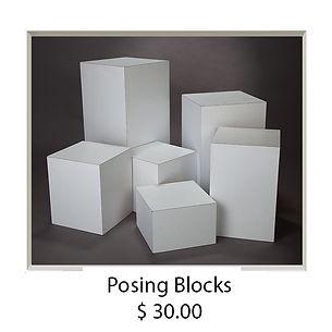 Posing Blocks.jpg