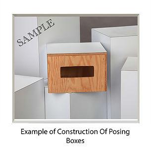 Posing Boxes Construction.jpg