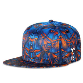 Vishvarupa Hat