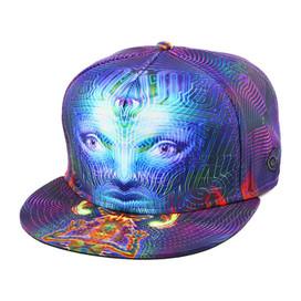 Heyoka Fitted Hat