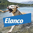 elanco_fisherdesign-01-700x700.jpg