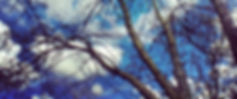 IMG_5673_edited.jpg