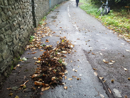 Rogue Leaves Form Andy Goldsworthy-esque Installation without Any Help from Andy Goldsworthy