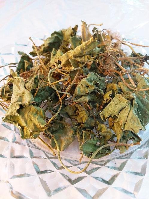 Non GMO Wild Dollar Weed Tea野生金錢草