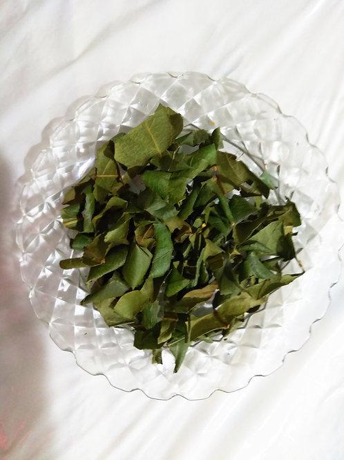 Non GMO Loquat Tea Bag 無基改枇杷茶包