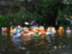 Duck Race.jpg
