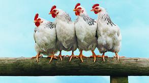치킨집·중국집에서의 개인정보보호