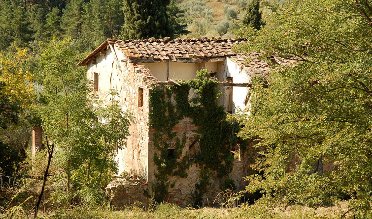 Abandoned for Decades