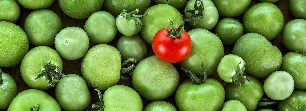 2עגבניות.jpg