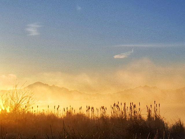 Fog hanging over Wiser lake this morning