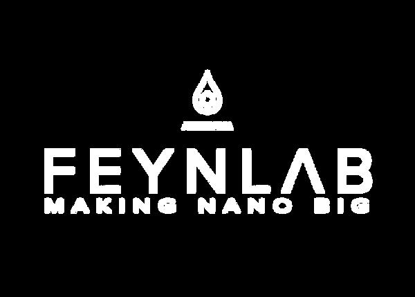 Feynlab.png