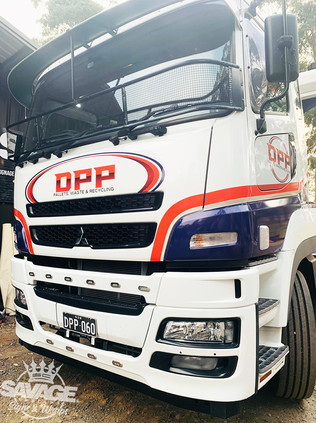 DPP1.jpg