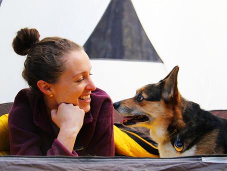 Make Your Dog A National Parks B.A.R.K. Ranger