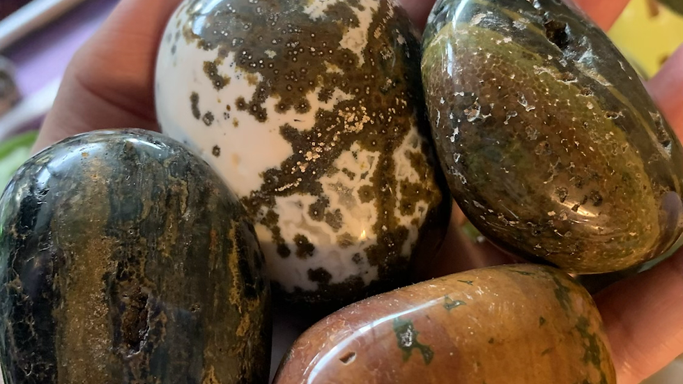 Ocean Jasper Palms to find your happy place