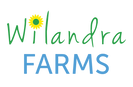 WF Logo FINAL v1 Text Only.png