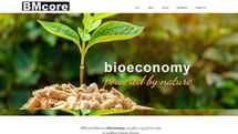 finish my wix website BM core redesign.j