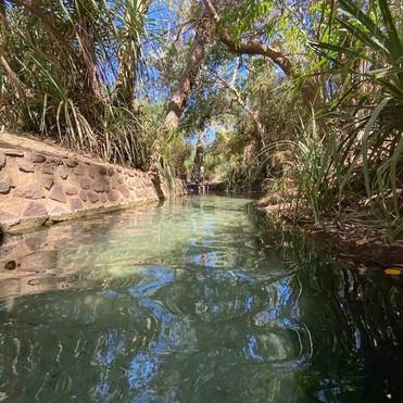 hot springs Minyerri.jpg
