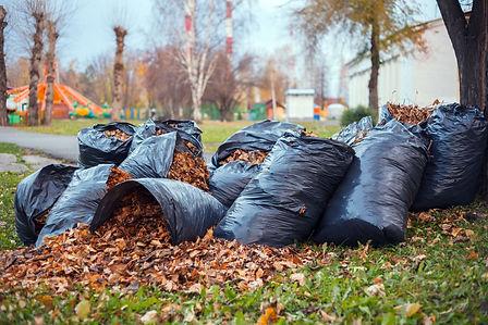 green waste & garden rubbish removal syd