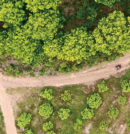 UAS agricultural drones bundaberg qld .w