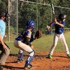 north ryde junior baseball.jpg